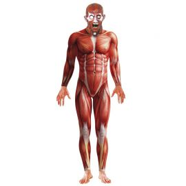 Disfraz de Anatomía para Hombre