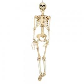 Esqueleto 90 Cms