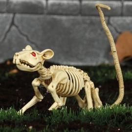 Esqueleto Rata 20 Cms