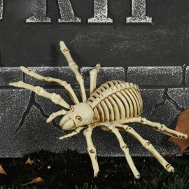 Esqueleto Araña 24 Cms