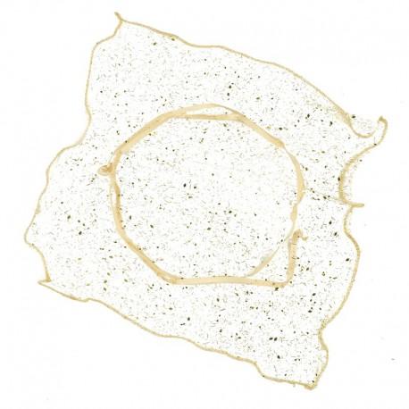 24 Pañuelos Cuadrado Dorados 23x23 cm