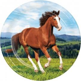 8 Platos Caballo y Pony 23 cm