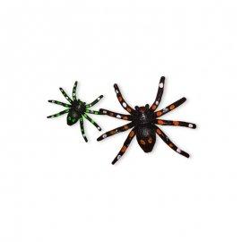 6 Arañas con Manchas