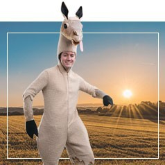Disfraces de Llama