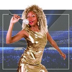 Disfraces de Tina Turner