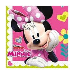 Fiesta Minnie Rosa