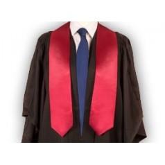 Bandas de Graduación